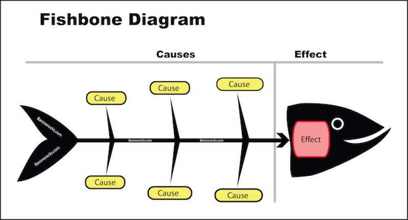 fishbone diagram medical