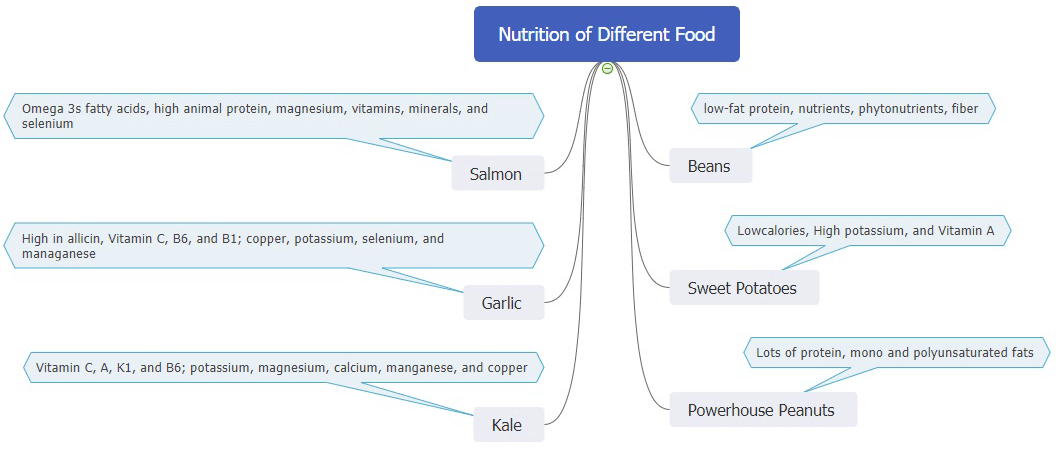 nutrition of different food mind map