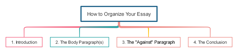 How to Organize Your Persuasive Essay