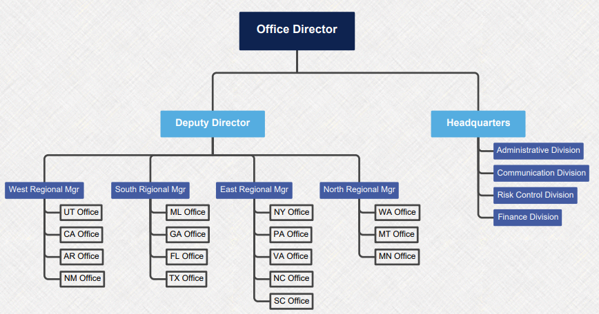 company structure mind map