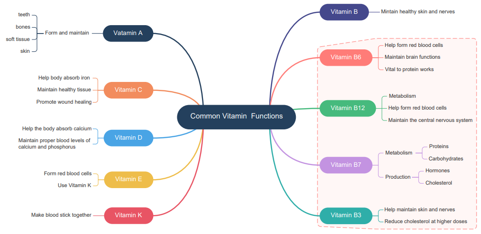 vitamin functions mind map